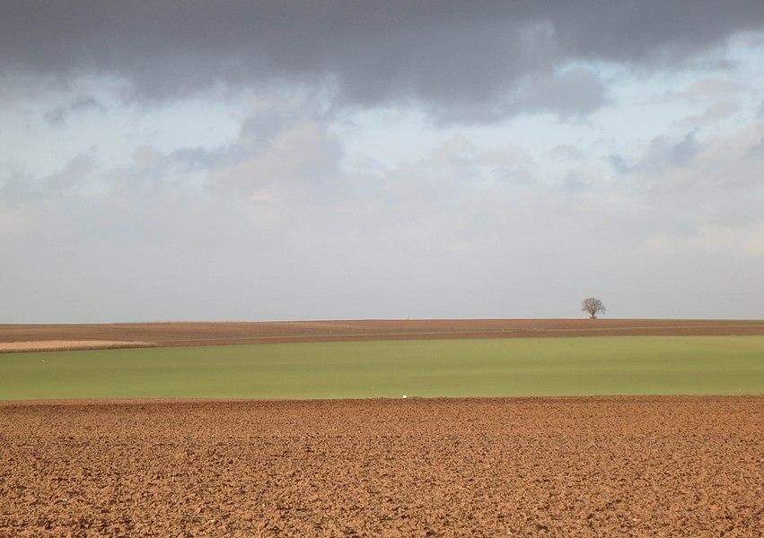 Landschap Racour