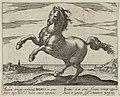 Landschap met paard van het Iberisch Schiereiland. NL-HlmNHA 1477 53011504.JPG
