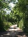 Lane to East Prawle - geograph.org.uk - 843956.jpg