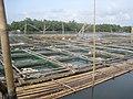 Lapu Lapu cages - panoramio.jpg