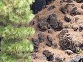 Lava, Parque nacional del Teide, Tenerife, España, 2015.JPG
