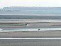 Le Crotoy 03 Baie de la Somme (3509426103).jpg