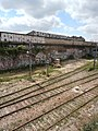 Les rails de la petite ceinture désaffectée, Paris (9231472418).jpg