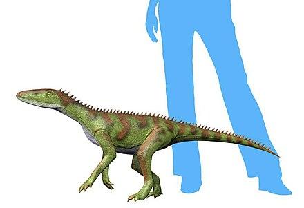 Lewisuchus