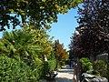 Lido, Venice - panoramio (2).jpg