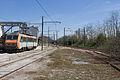 Ligne de Bourron-Marlotte à Malesherbes - 2013-04-21 - IMG 9312.jpg