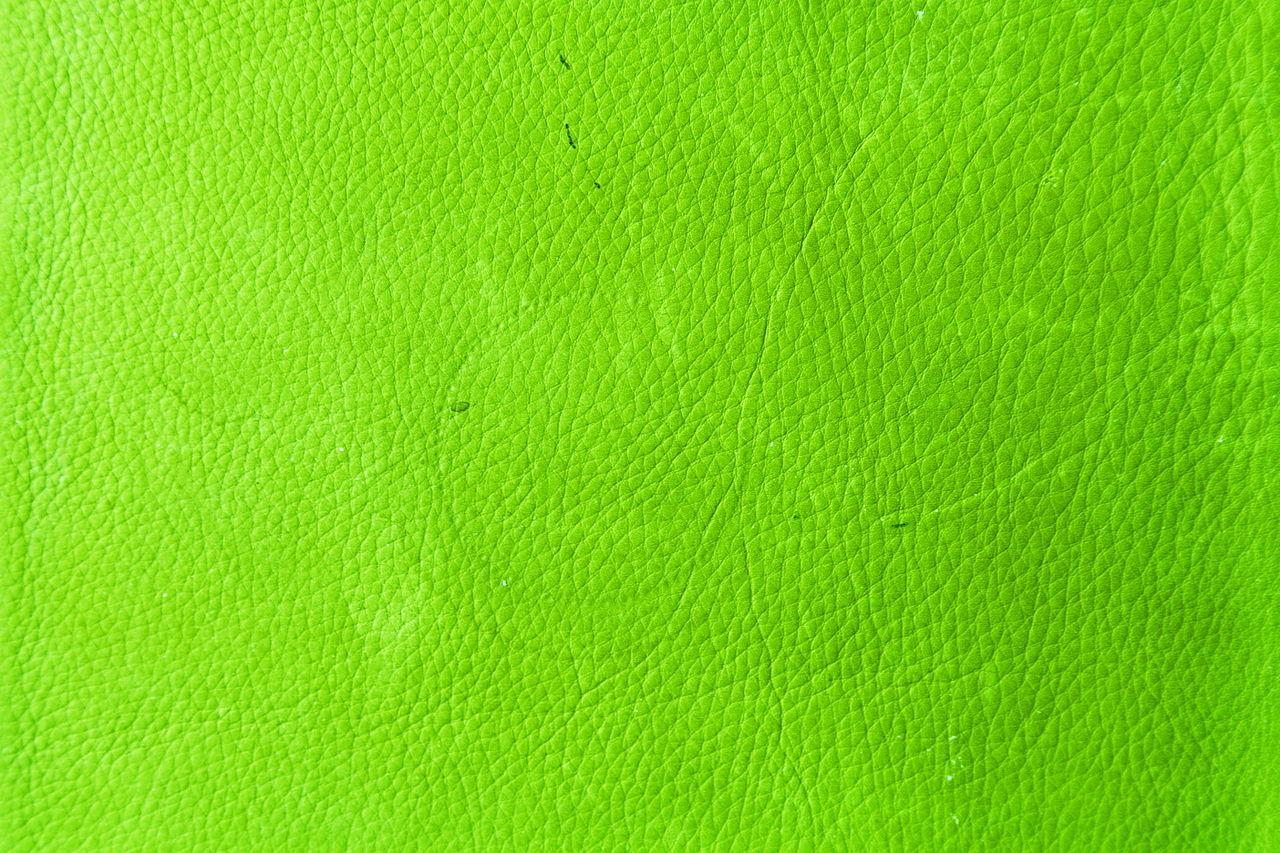 Bright Green Walls In Living Room