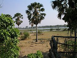 Liwonde Park - viiew of Shire River.JPG