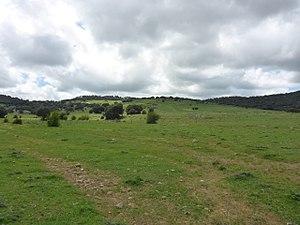 Llanos del Republicano - P1230174.jpg