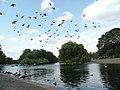 London Regent's Park - panoramio (12).jpg