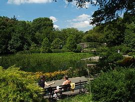 Lower Central Park Shot 3