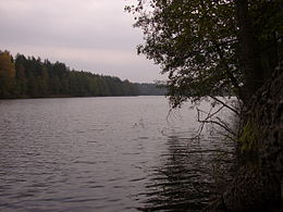 Lynas (Lake in Varėna District Municipality).jpg