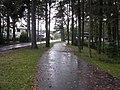 Mähe tee - panoramio - Aulo Aasmaa (9).jpg