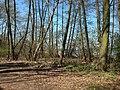 Müggelsee-Fredersdorfer Mühlenfließ (14).jpg