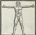 M. Vitrvvivs per Iocvndvm solito castigatior factvs cvm figvris et tabvla vt iam legi et intelligi possit (1511) (14591870380).jpg