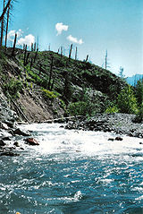 MT Forest Fire Rapids.jpg