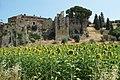 Magione, Province of Perugia, Italy - panoramio (26).jpg