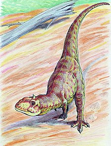 Illustration av Majungasaurus.