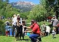 Mammoth fishing 9651 (15745354697).jpg
