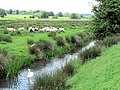 Marsh drainage channel - geograph.org.uk - 451681.jpg