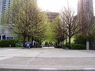Mel Lastman Square - Image: Mel Lastman Square Trees