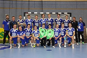 Finland national handball team - The Finland national handball team in January 2016