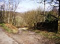 Mill Lane - geograph.org.uk - 736590.jpg