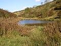 Millington Pastures Pond - geograph.org.uk - 278677.jpg