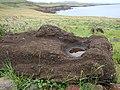 Moai head Vinapu EasterIsland.JPG