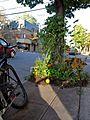 Montréal quartier latin 411 (8212664761).jpg