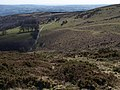 Moorland above Yarner Wood - geograph.org.uk - 1231263.jpg
