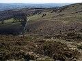 Moorland above Yarner Wood - geograph.org.uk - 1231263.jpg