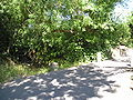 Mosson Laverune-SJVedas 28062009.JPG