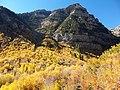 Mount Timpanogos Trail - panoramio.jpg