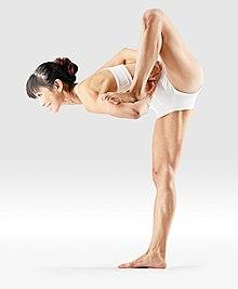 220px Mr yoga standing bound yogic staff yoga asanas Liste des exercices et position à pratiquer