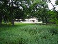 Mrs. A. W. Gridley House (Batavia, IL) 03.JPG