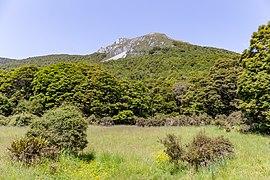 Mt Peel from Cobb Valley, Kahurangi National Park, New Zealand.jpg