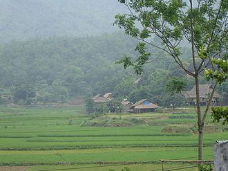 Muong people - Muong Settlement with traditional houses near Hòa Bình
