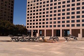 Mustangs at Las Colinas - The Mustangs at Las Colinas