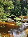 NÖ-Naturdenkmal ZT-149 Kamptal von Roiten bis Uttissenbach sl5.jpg