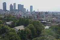 Nagoya Castle dk4663.jpg