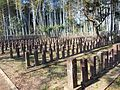 Nanamoto Imperial Army Cemetery.jpg