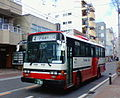 NanbuBus P-LR312J-FHI No.409.jpg