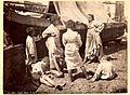 Napoli - Studio di Barche pescherecce (n° 2911).jpg