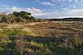 Nationaal Park Zuid-Kennemerland (18).jpg