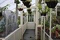 National Botanic Garden,Dublin,Ireland - panoramio (36).jpg