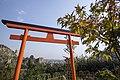 National Botanical Garden of Georgia باغ های بوتانیکال در شهر تفلیس گرجستان 23.jpg