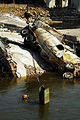 Navy Divers, Army Enginners, Recover Collapsed Bridge DVIDS54828.jpg