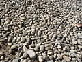 Neum beach stones.jpg