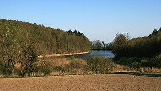 """Daisendorf - The little pond """"Neuweiher"""" in springtime"""
